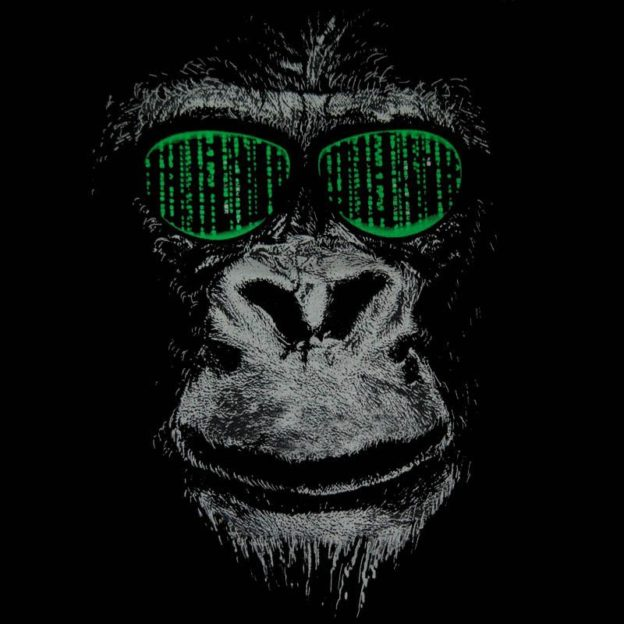 Matrix Monkey image